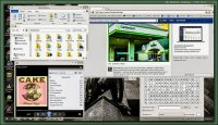 software Microsoft Windows